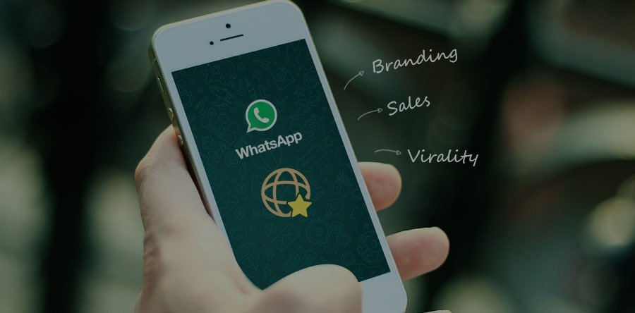 How did Absolut Vodka, Colgate, Xiaomi, Buzzfeed use WhatsApp for their Branding, Sales, and Virality?